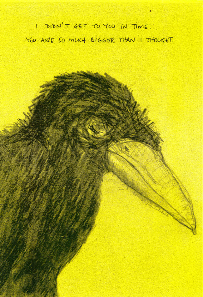 encil drawing of a raven